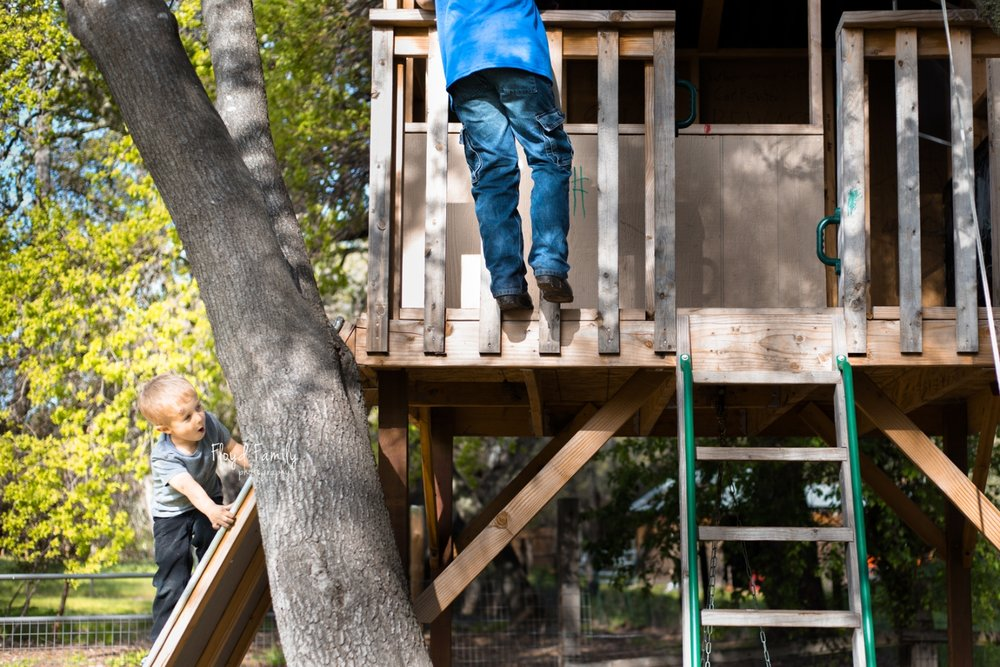 Two brothers playing all over their tree house in their backyard