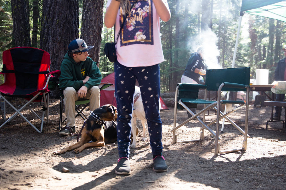 Small girl standing in from of brother while he sits in a camping chair loving his dogs.