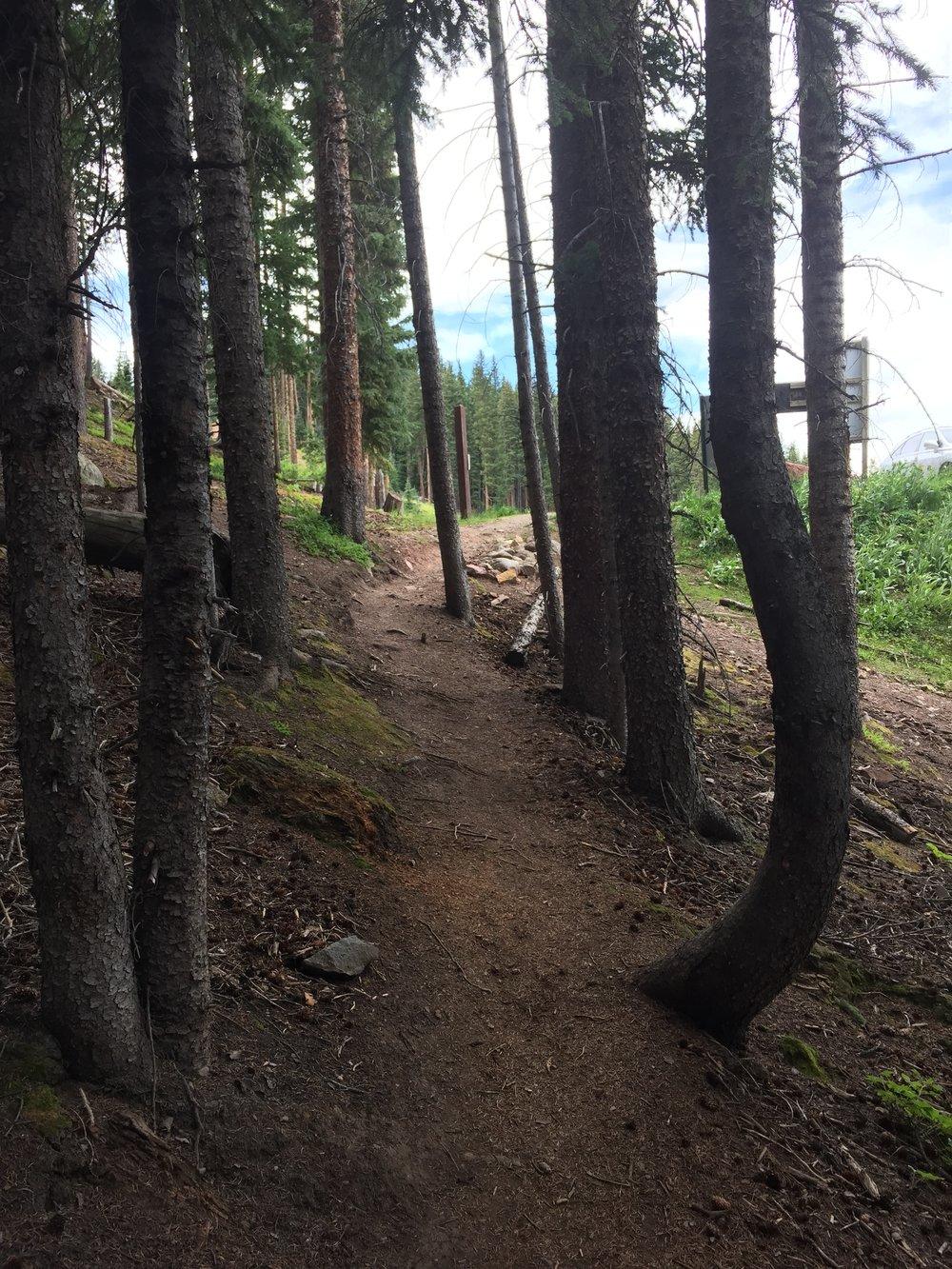 """Pee Trail""."