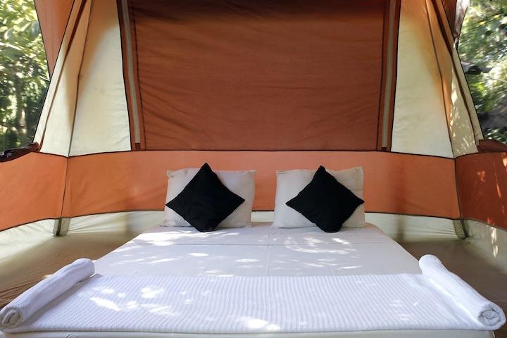 platform tent interior.jpg