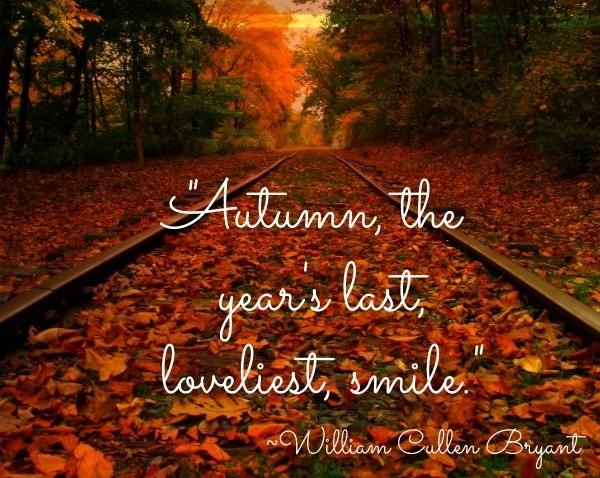 e209c73e6544efe4da1fbb7280276954--pumpkin-quotes-fall-season-quotes.jpg