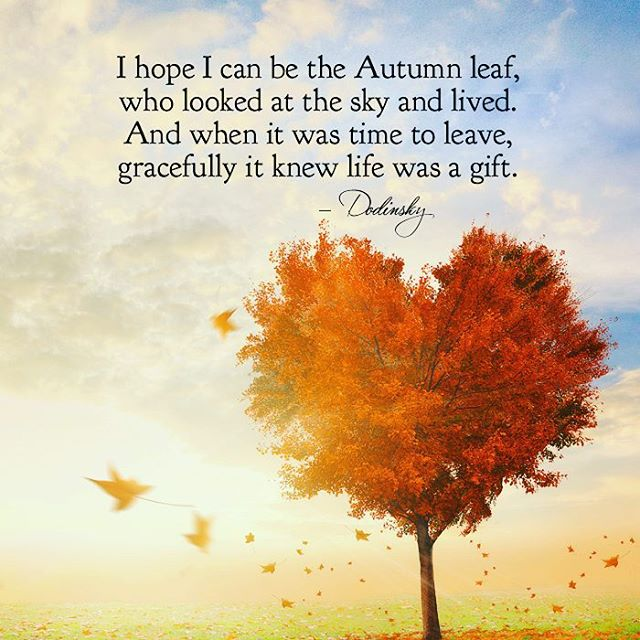 Impressive-Autumn-Quotes.jpg