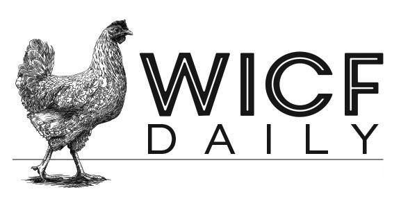 WICF_Daily_Logo_4.jpg