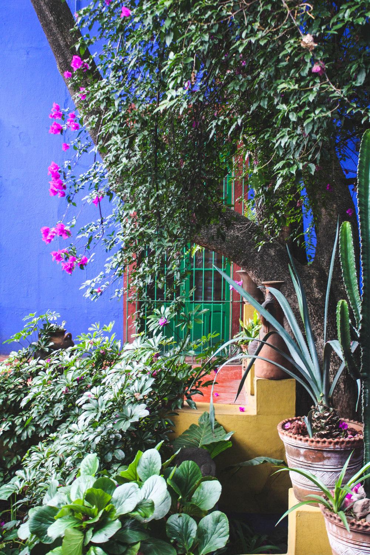 Mueso Frida Kahlo - endearmentendure.com