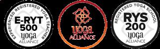 NEW YA logo.jpg
