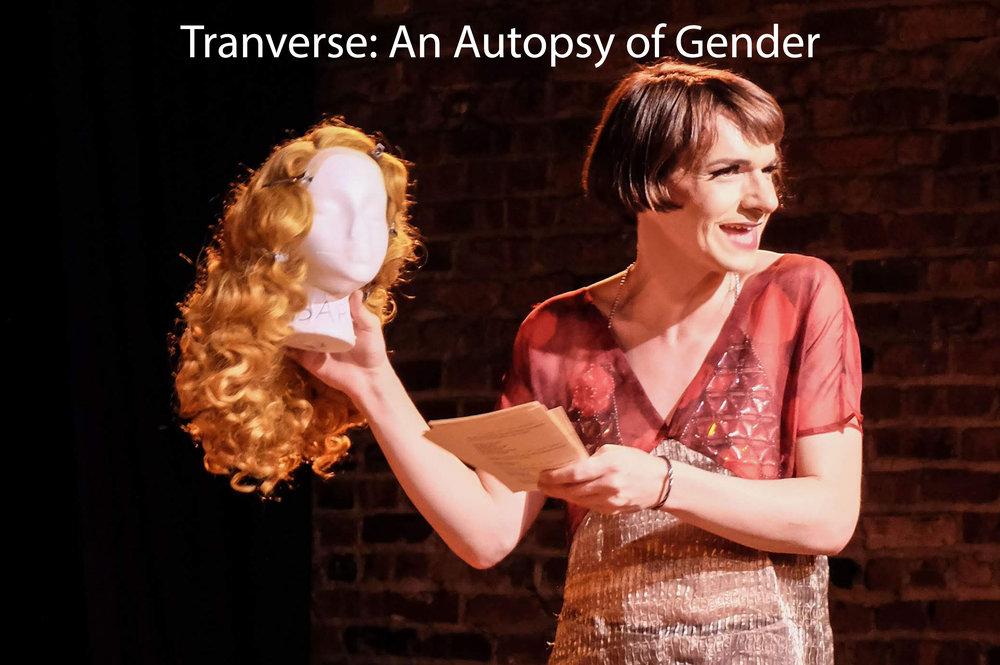 transverse website.jpg