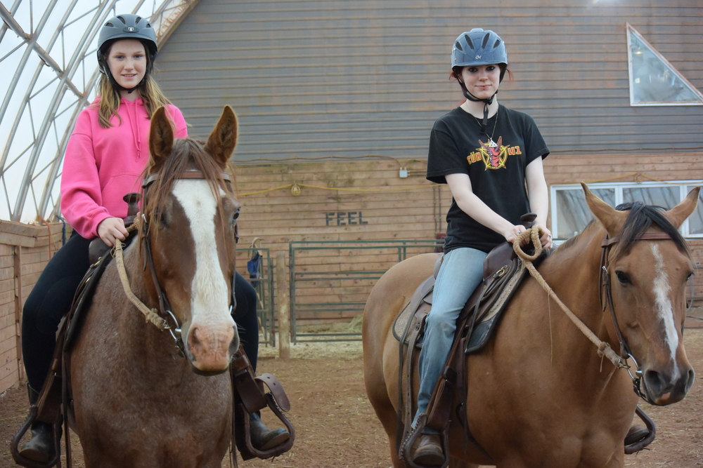 Horseback Riding Lessons!