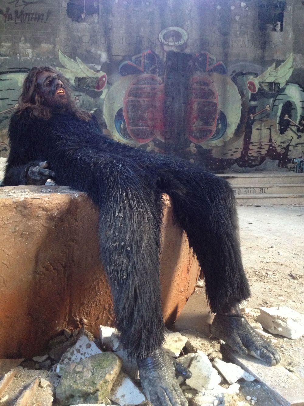 LOUNGING APE.jpeg