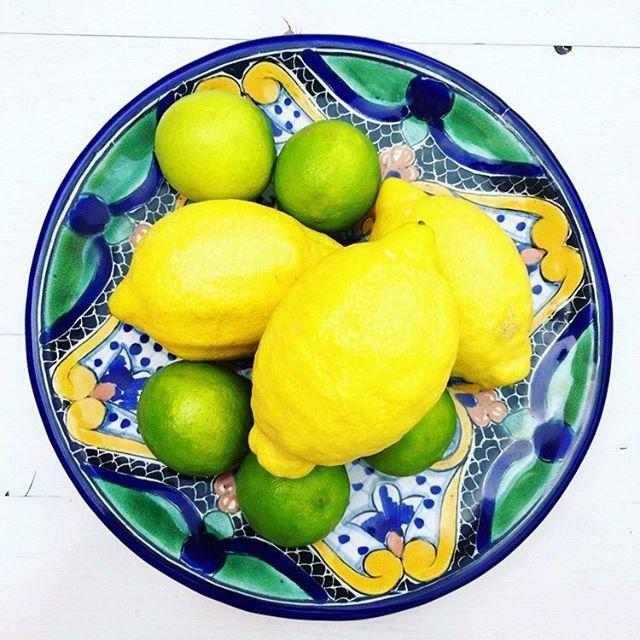 Summer. 🍋 #lemon #lime #citrusfruit #healthyschnitzel #foodblog #foodblogger_de #vitaminc #fun #instafood #tflers #vegan #plantbased #foodie #foodporn