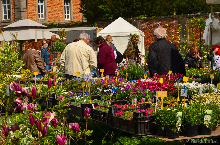 People admiring the flowers at the Enghien garden fair.