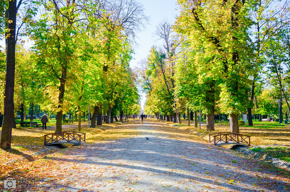 Parc Simion Bărnuțiu à Cluj-Napoca
