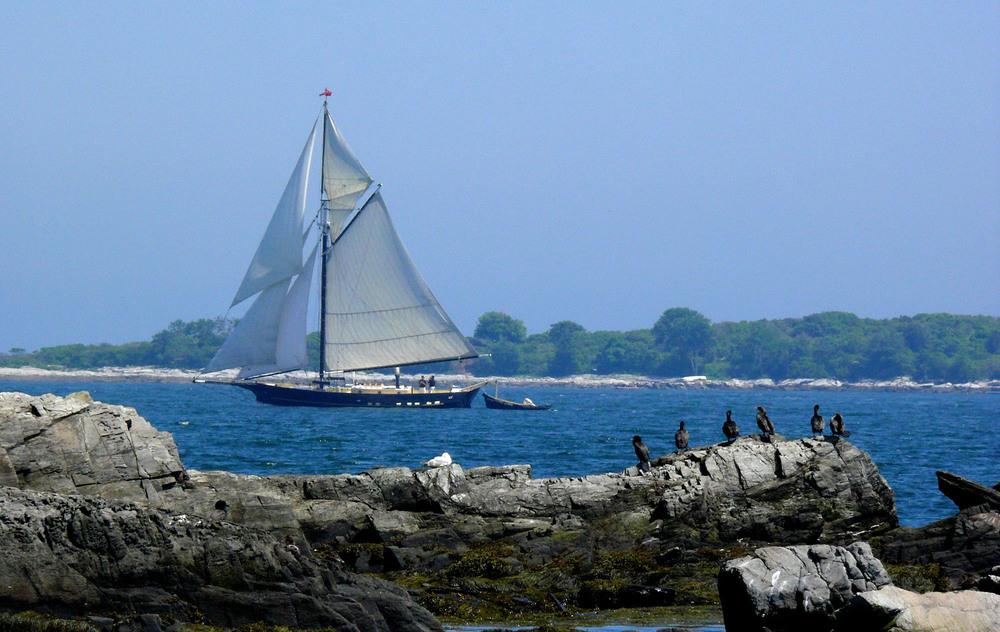 Maine Schooner.jpg