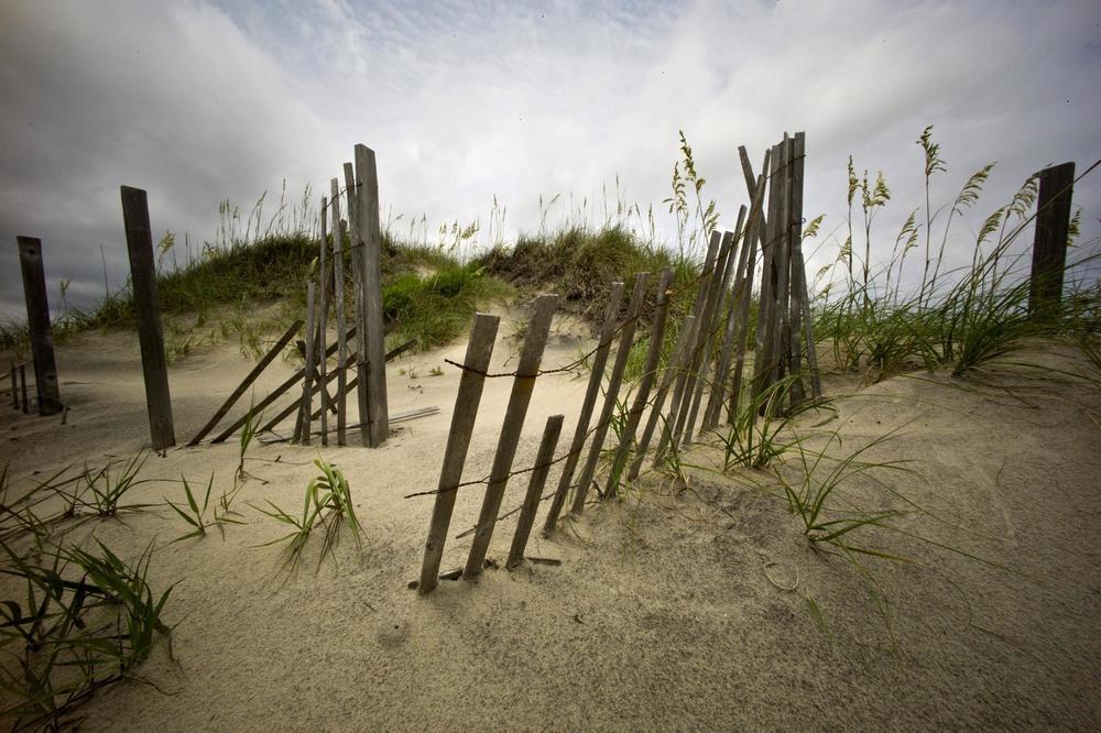 Coquina Beach Sandfence.jpg