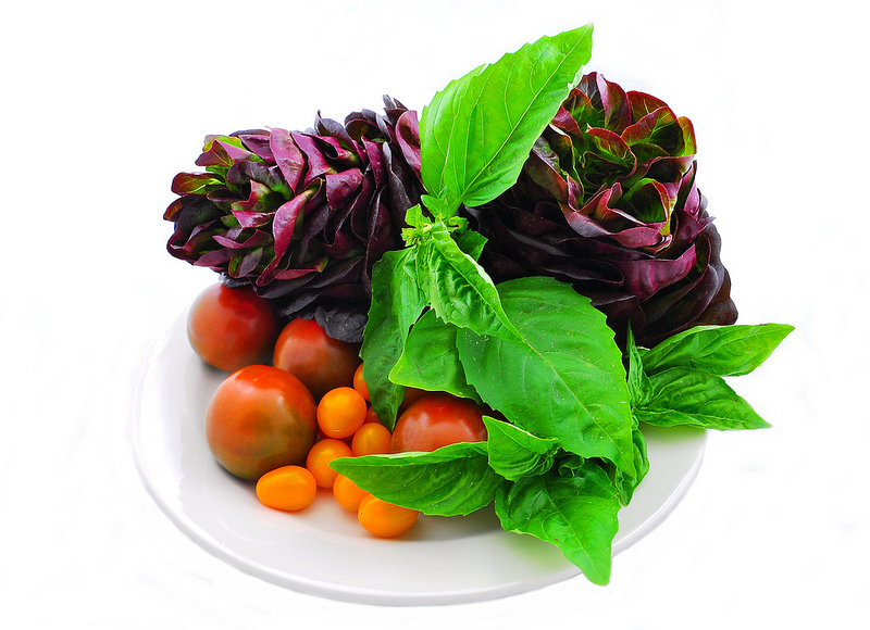 Healthy salad and vegetables