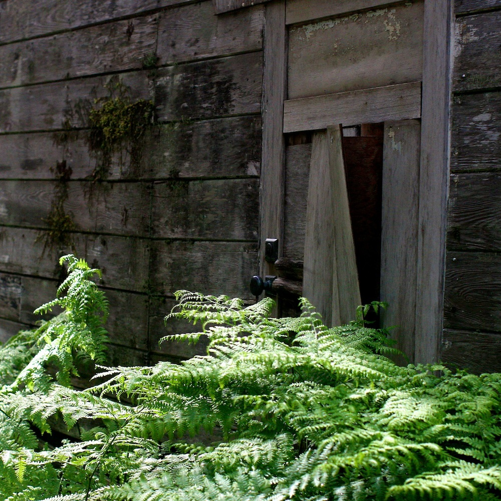 1 door (3).jpg