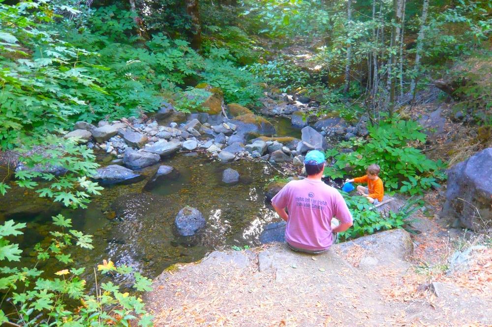 Summertime creek.