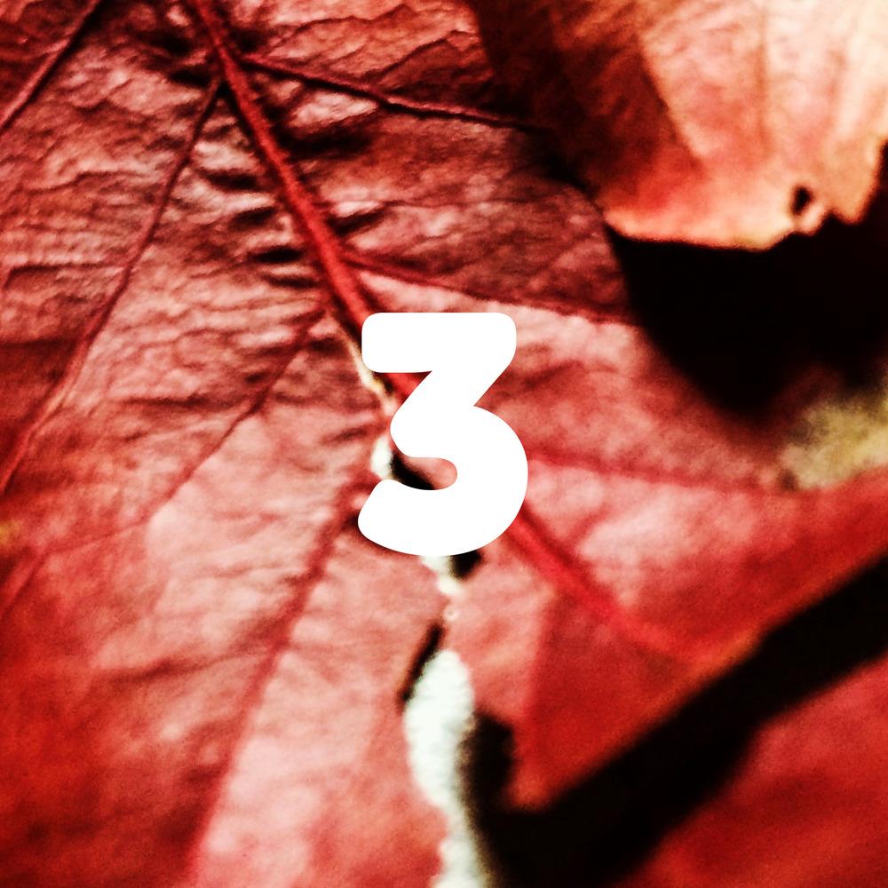 003 - Sakura Cover.jpg
