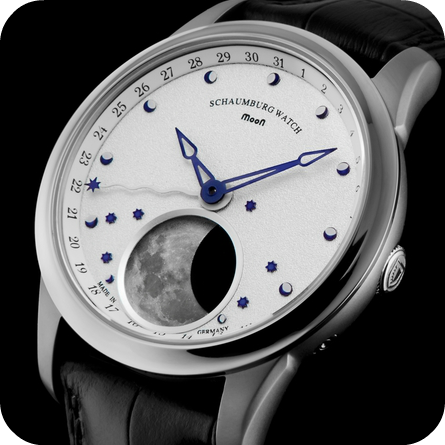 SCHAUMBURG WATCH MOON METEORITE