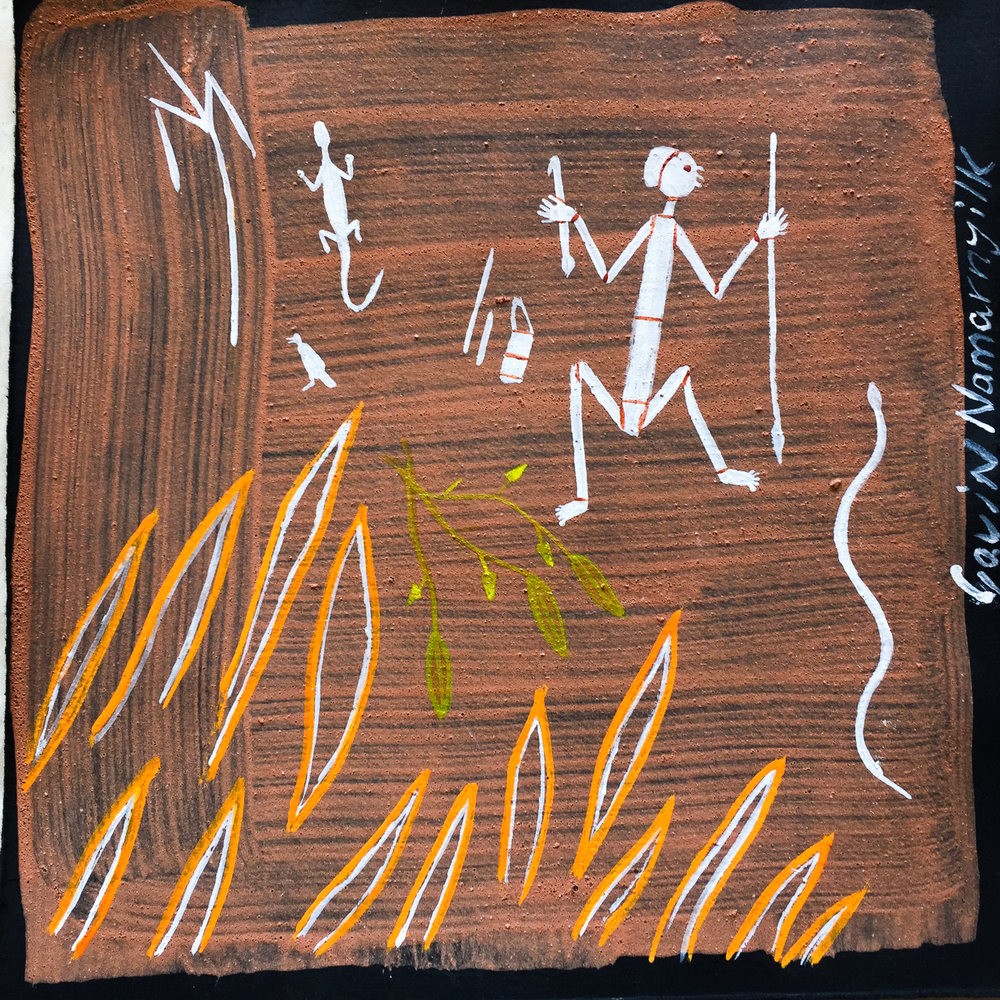 Gavin Namarnyilk Wildfire and Rock Art.