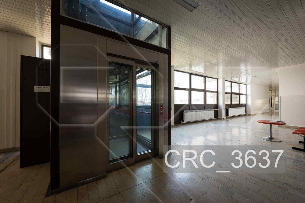 CRC_3637.jpg