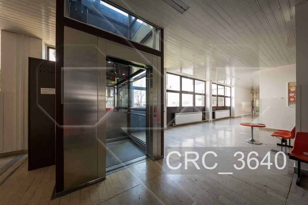 CRC_3640.jpg
