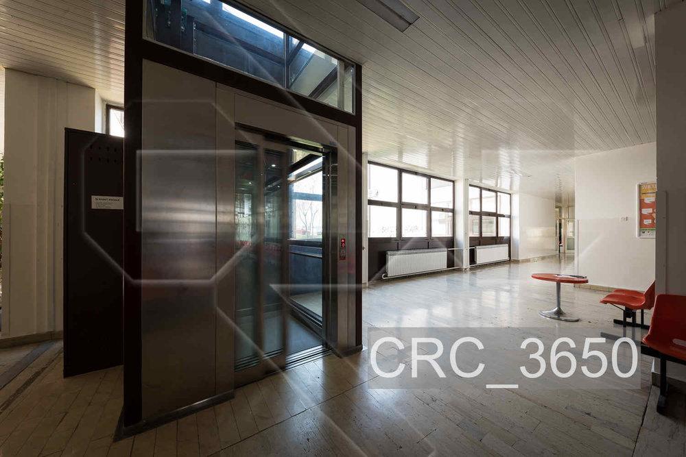 CRC_3650.jpg
