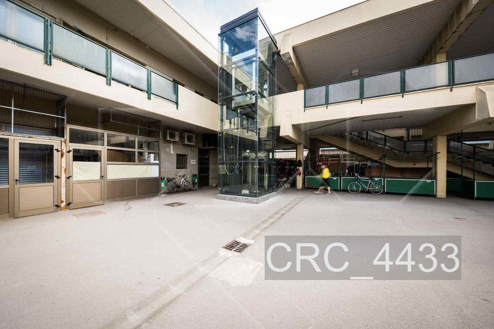 CRC_4433.jpg
