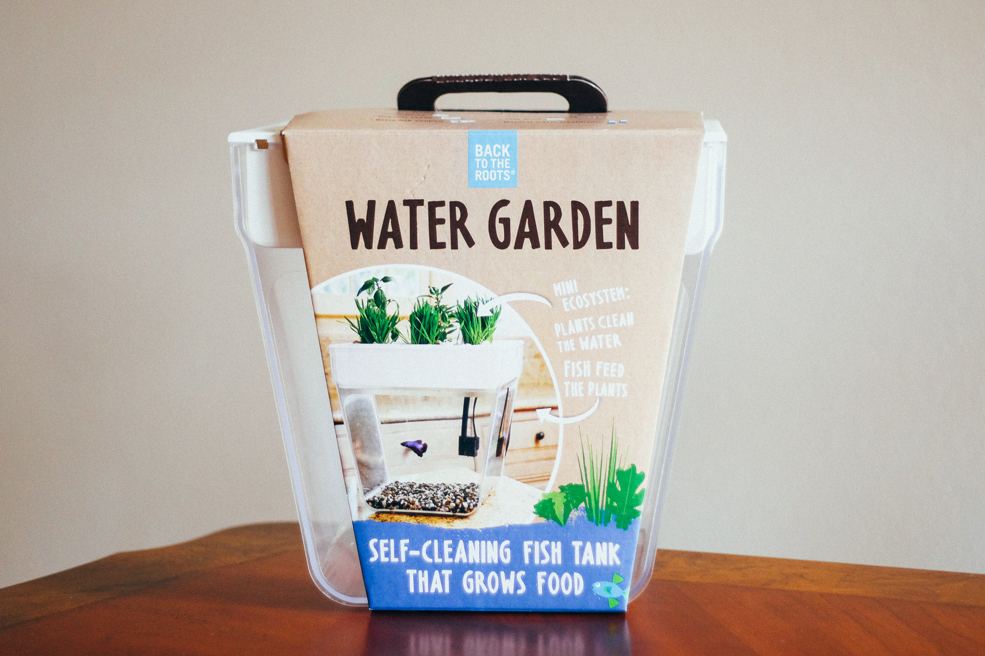 Gift Idea Back To The Roots Water Garden From Coast To Coast