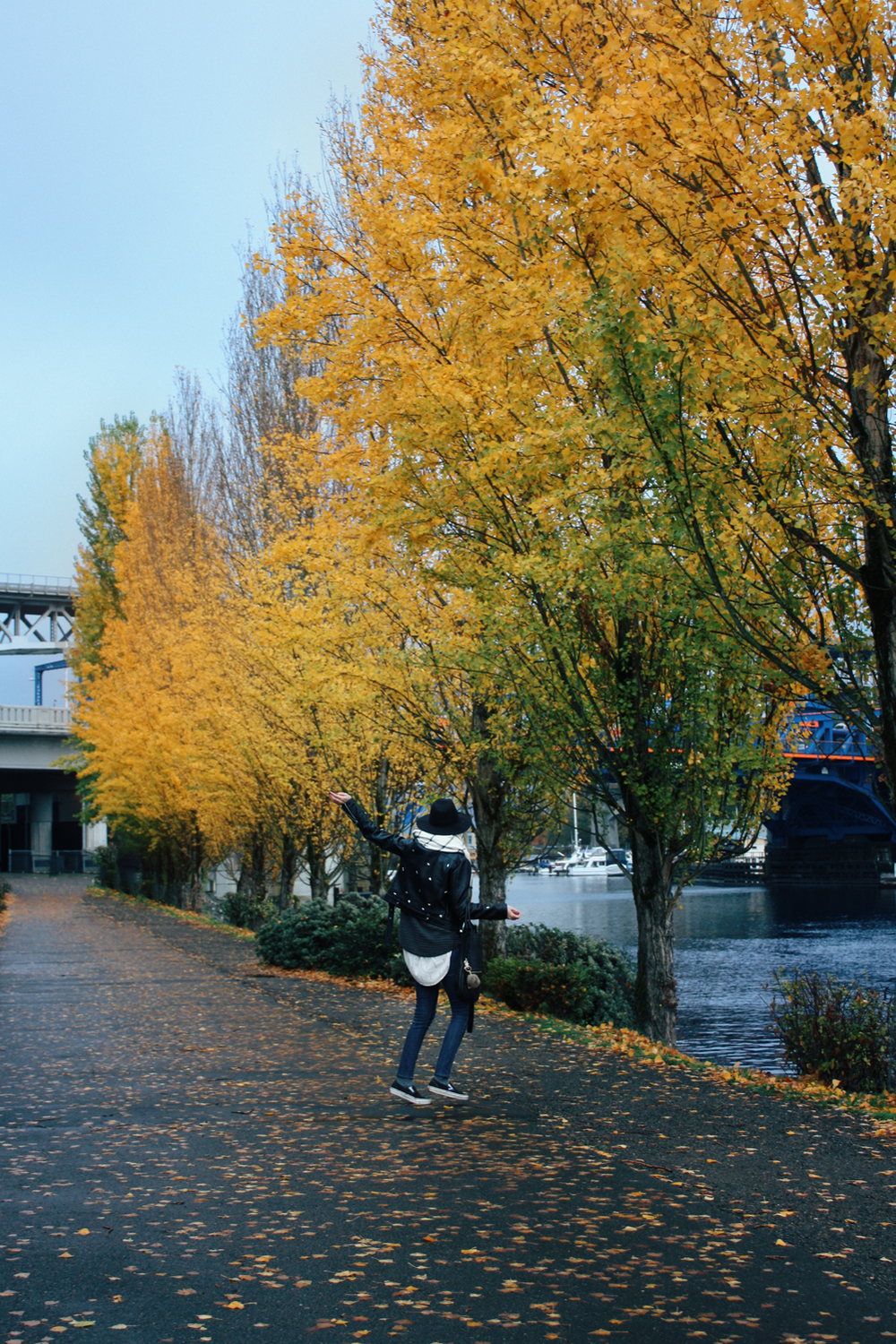 autumn at Fremont canal via truelane.png