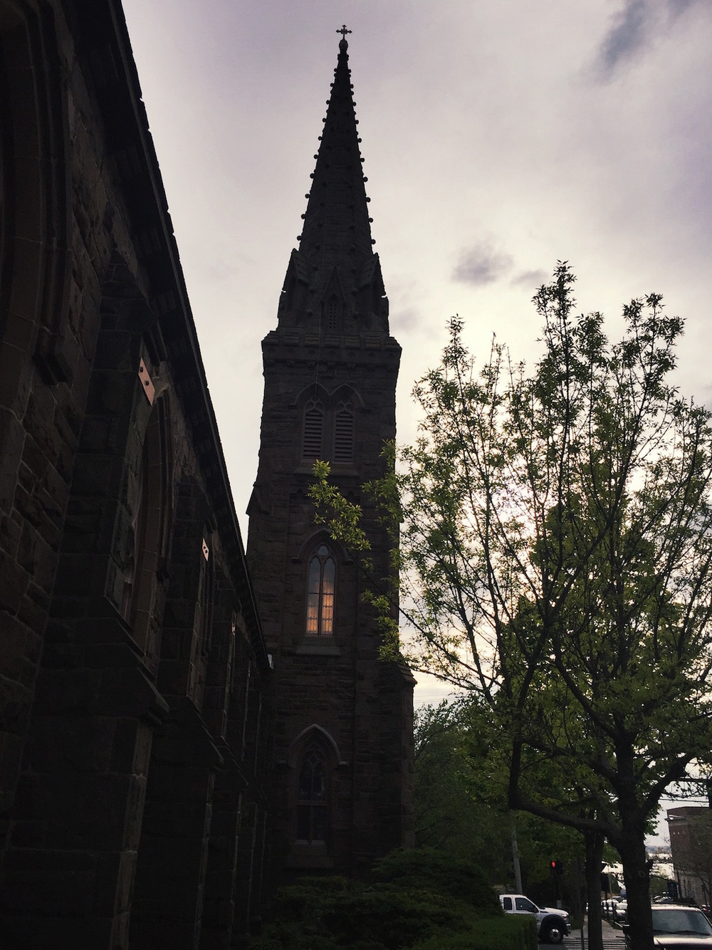 St. Mary's Cathedral | truelane