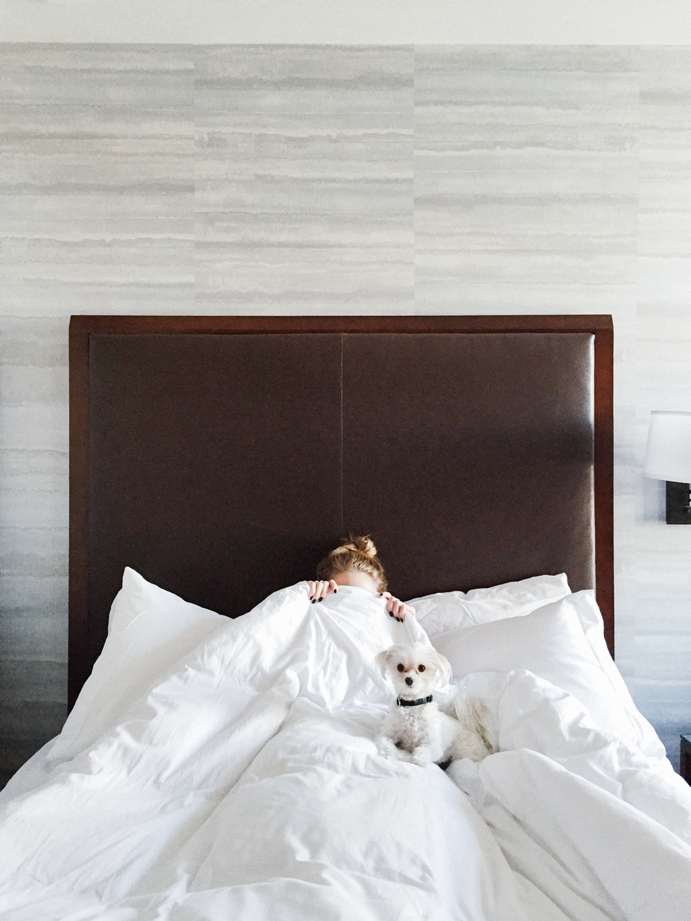 Home Sweet Hotel: The Hotel Ivy | truelane