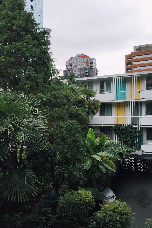 Home Sweet Hotel: The Burrard | truelane