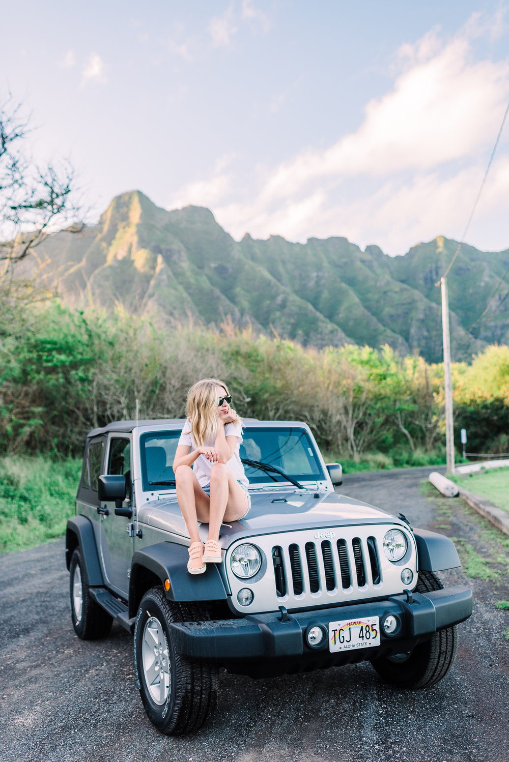 Postcards from Hawaii | truelane