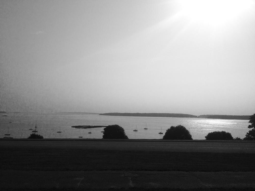 photo 2 (81)