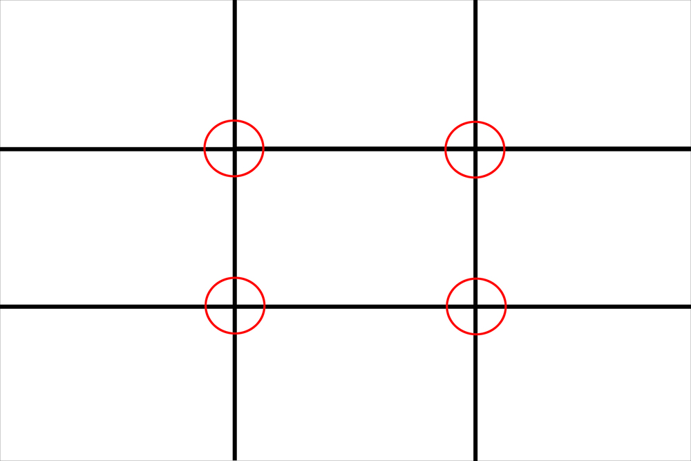 The Rule of Thirds Grid. Note the four intersections.