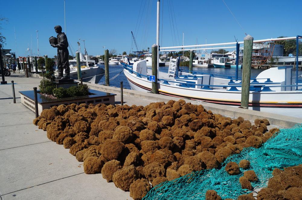 The Tarpon Springs Sponge Boat Docks.