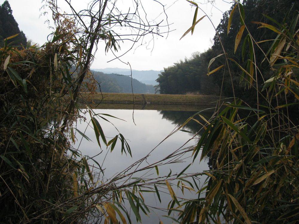 Nearby pond