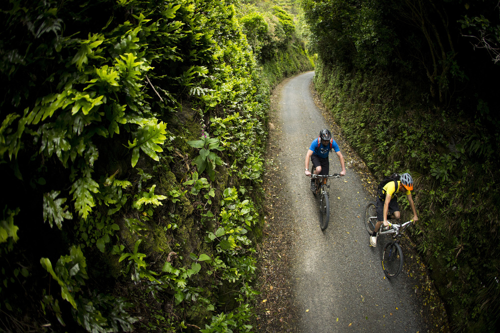 Rimutaka Cycle Trail - Pakuratahi Forest.jpg