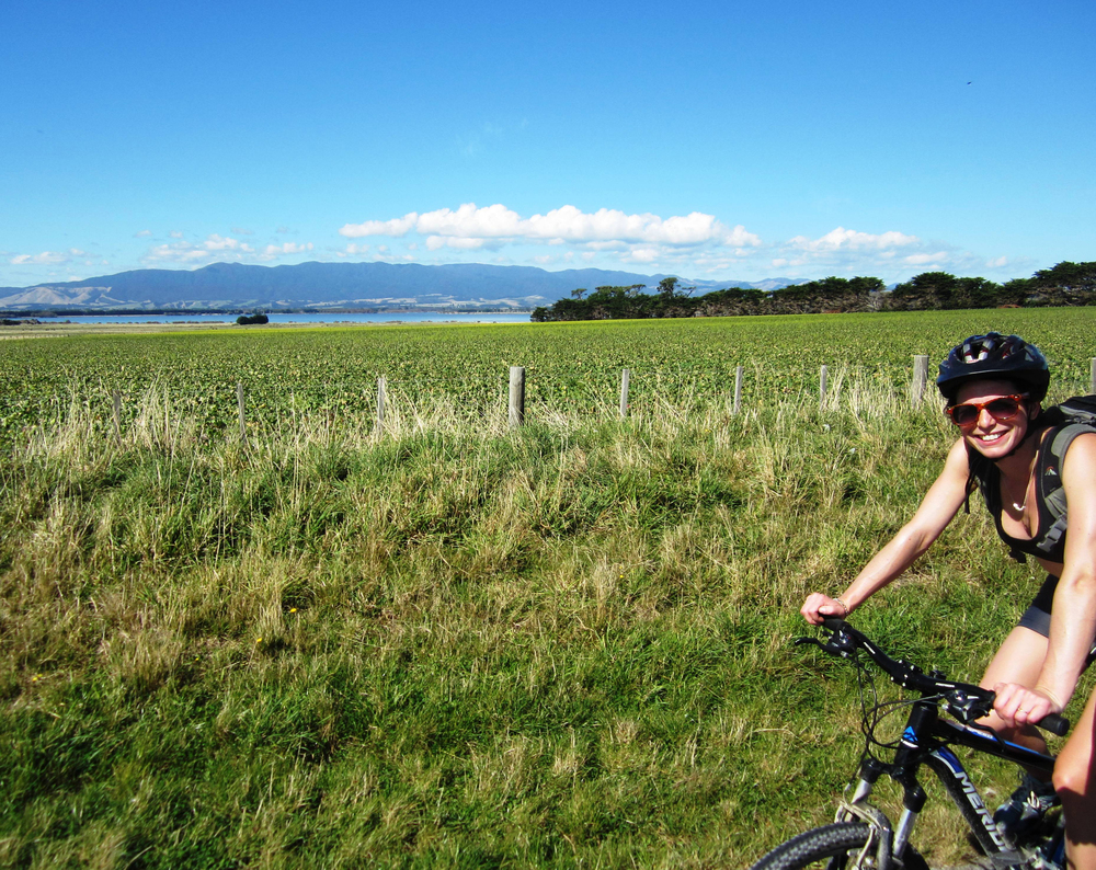 Road to Ocean Beach - Lake Wairarapa.jpg