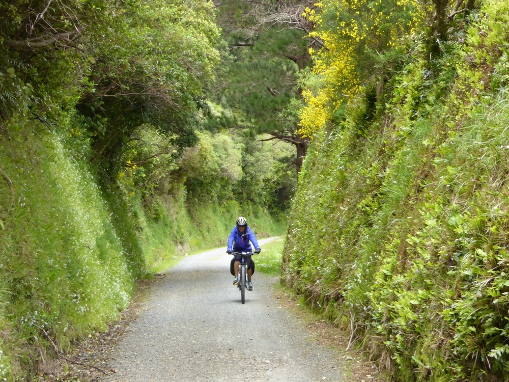Rimutaka incline - David Heap.jpeg