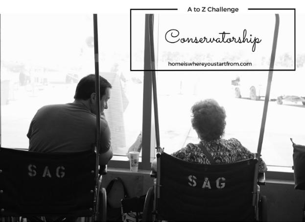 conservatorship-eldercare-homeisblog