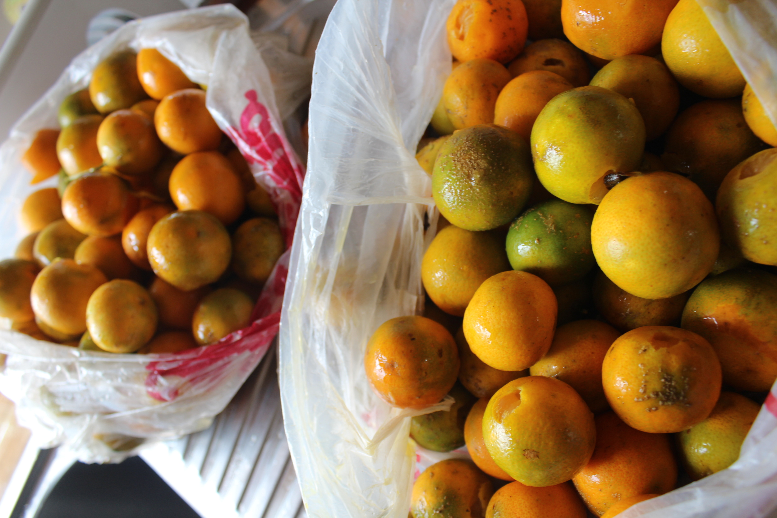 Bags of kumquats