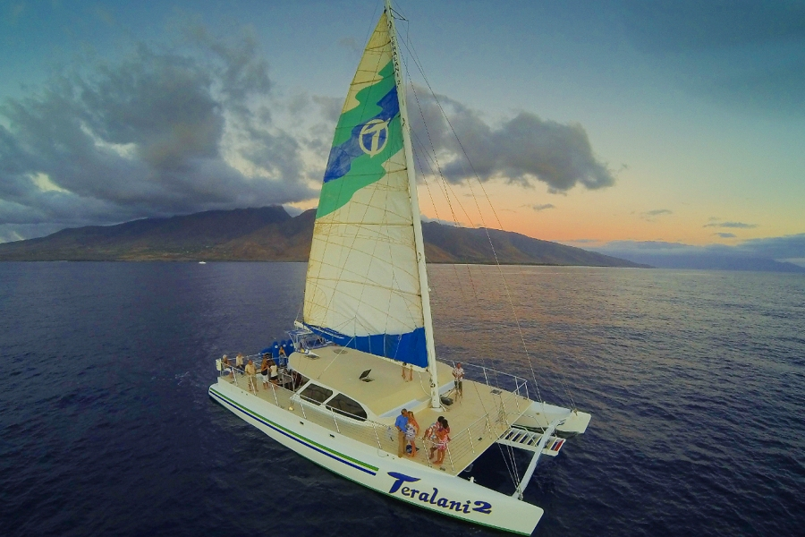 Teralani_Whale_Watch_Maui_Sailing.jpg