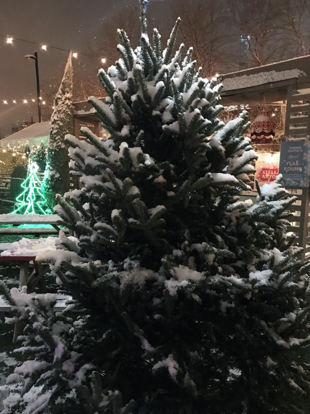 ChristmasTrees03.png