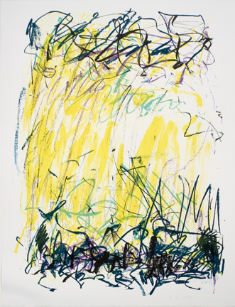 Joan Mitchell (American, 1925-1992), Sides of a River, 1981, lithograph, 42 x 32 inches. Gift of Anthony Bregman. HHAR 4515.