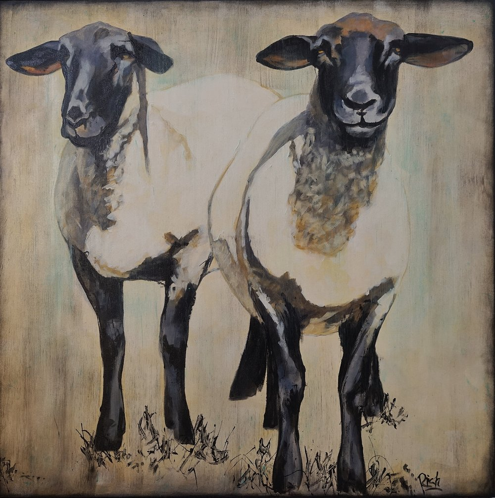Pair of Ewes  Acrylic on canvas 38x38