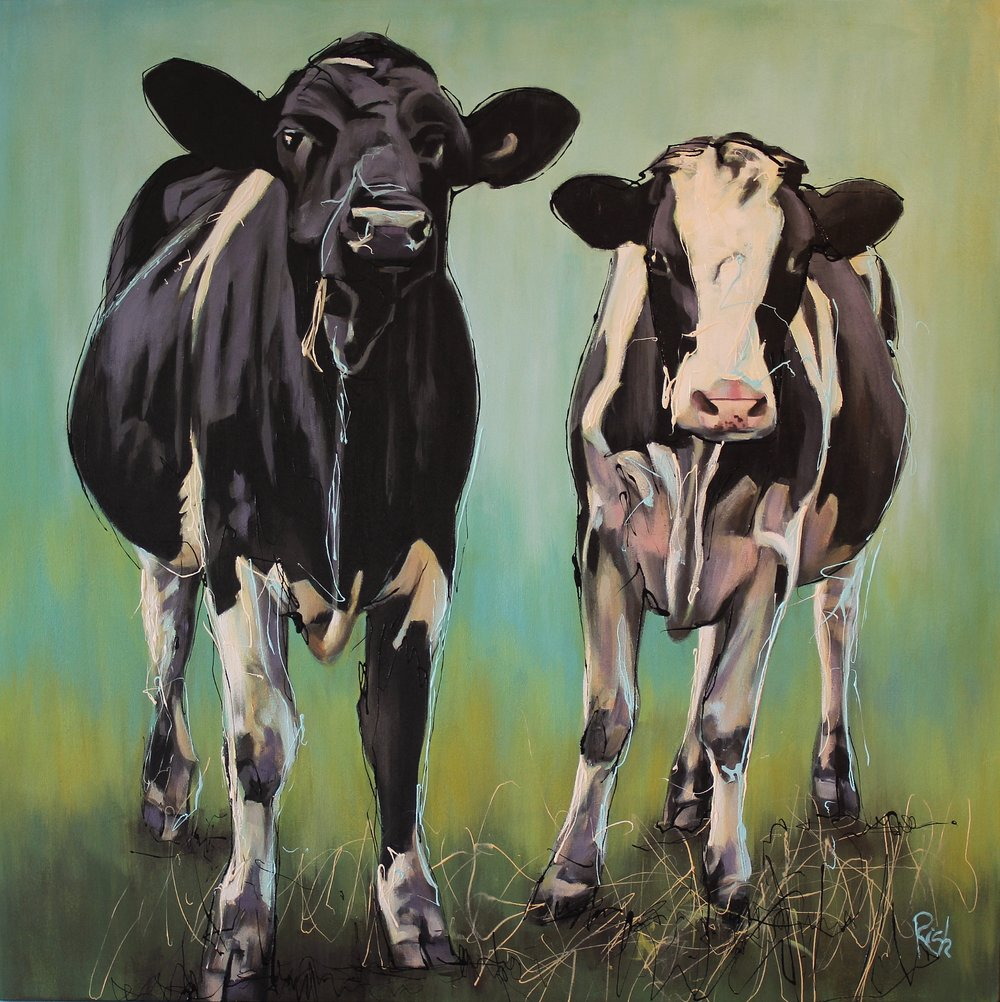 Cow Duo  Acrylic on canvas 48x48