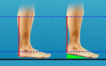 Heel elevation is a simple adjustment that helps train the right muscles to absorb force in a lunge or squat movement.
