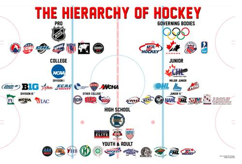 hierarchy of junior hockey.jpg