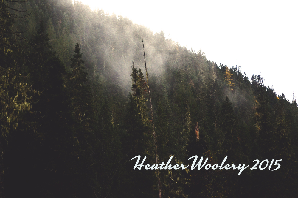 All Rights Reserved | Heather Woolery | 2015